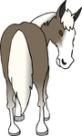 horseass.jpg