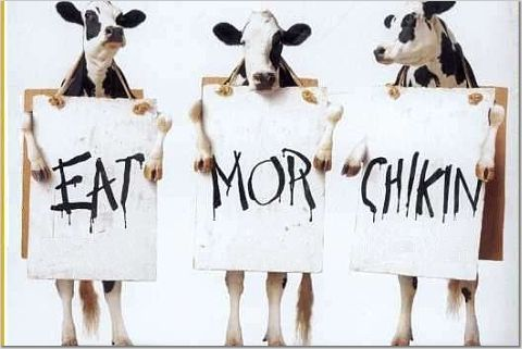 eat-mor-chikin.jpg