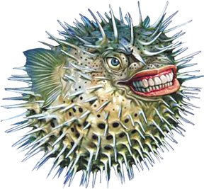 blowfish_normal