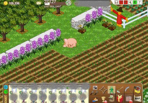 FarmTown1