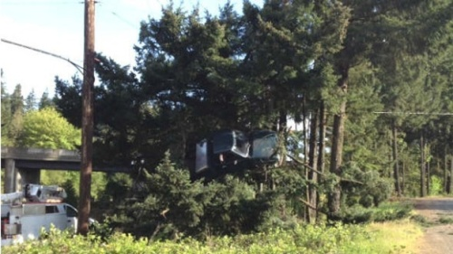 Oregon-Truck-in-tree-jpg