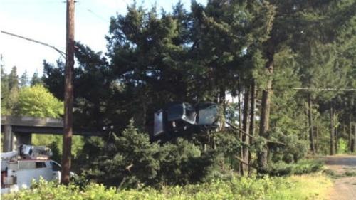 Oregon-Truck-in-tree-jpg